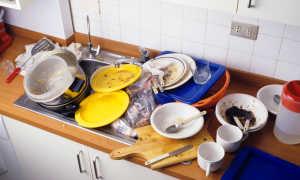 Нужна ли посудомоечная машина или кому в хозяйстве потребуется посудомойка?