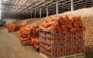 Вентиляция овощной ямы в гараже: организация воздухообмена в гаражном овощехранилище