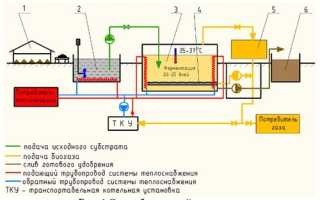 Сильно ли воняет биогазовая установка? Как ее правильно чистить?