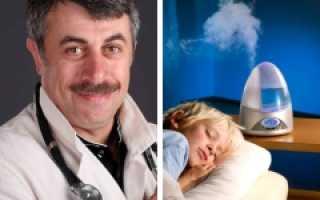 Плюсы и минусы увлажнителя воздуха для ребенка: реальная оценка использования