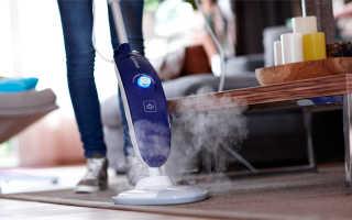Паровые пылесосы: обзор популярных моделей и советы будущим покупателям