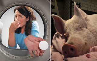 Неприятный запах в стиральной машине: причины появления запаха и способы его устранения