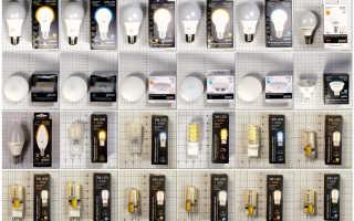 """Светодиодные лампы """"Gauss"""": отзывы, обзор достоинств и недостатков производителя"""
